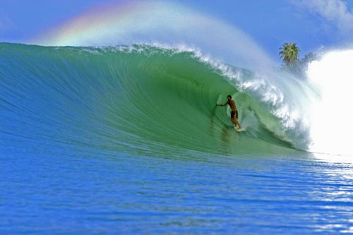 Barrel Surf Wave