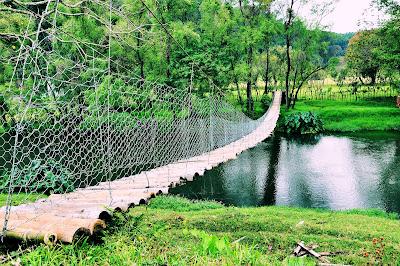 Puente Colgante o de Hamaca sobre el Río Filobobos en Tlapacoyan, Veracruz, México.