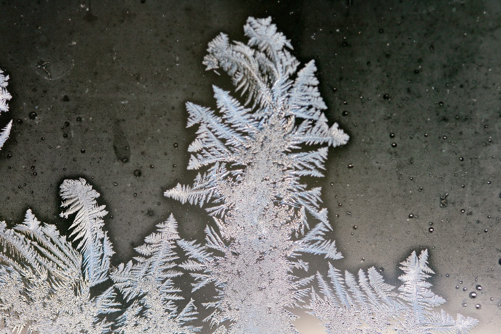 ice crystals on windowpane