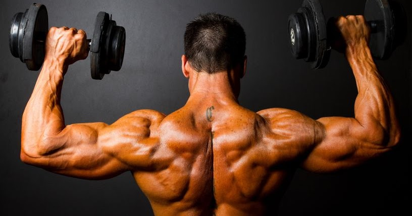 Muscle Building Shoulder Workouts - Key Things You Must Remember