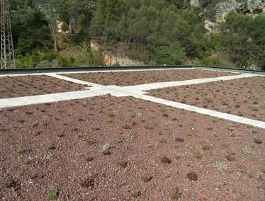 cubierta vegetal de sedum Bolarque