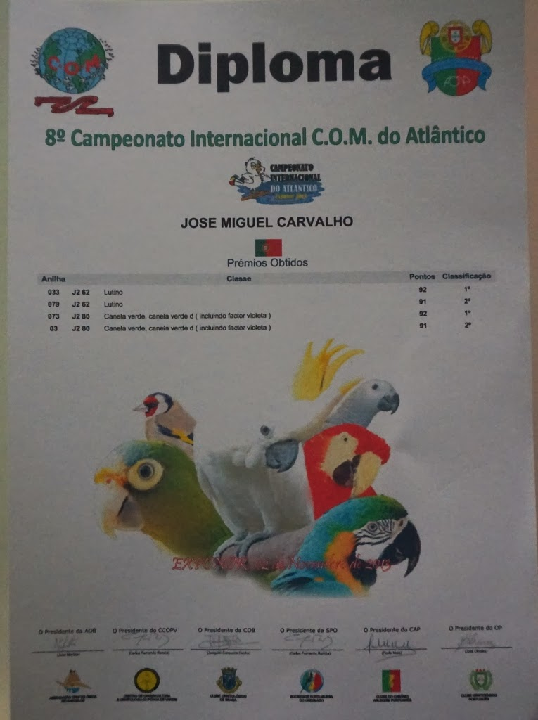 8º Camp. International Atlântico 2013
