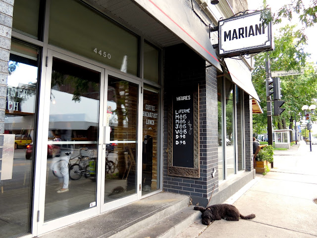 Mariani - Montreal - My Sweet Salivation
