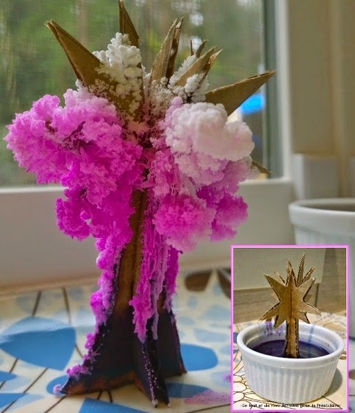 Bri coco de lolo faire fleurir un arbre magique en cristaux de sel - Faire pousser un cerisier ...