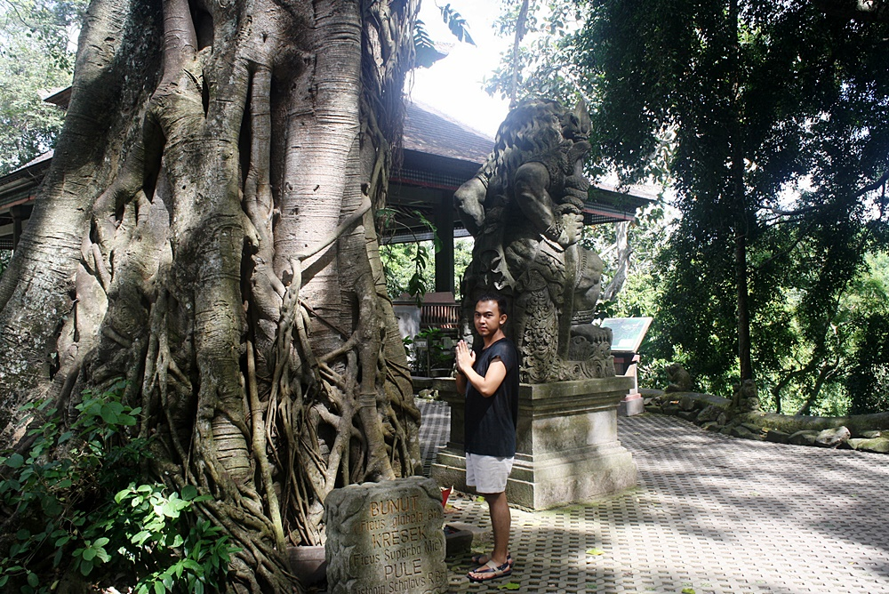 DELUXSHIONIST TRAVEL ROAD TO UBUD BALI - FASHION AND LIFESTYE BLOGGER INDONESIA