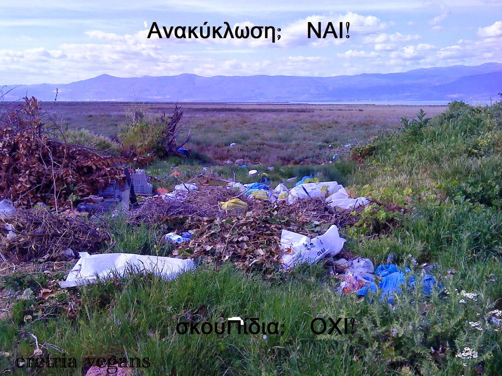Μαζεύω σκουπίδια και ανακυκλώνω - παντού!!! Ας μετατρέψουμε αυτήν την απλή κίνηση σε κίνημα!!!