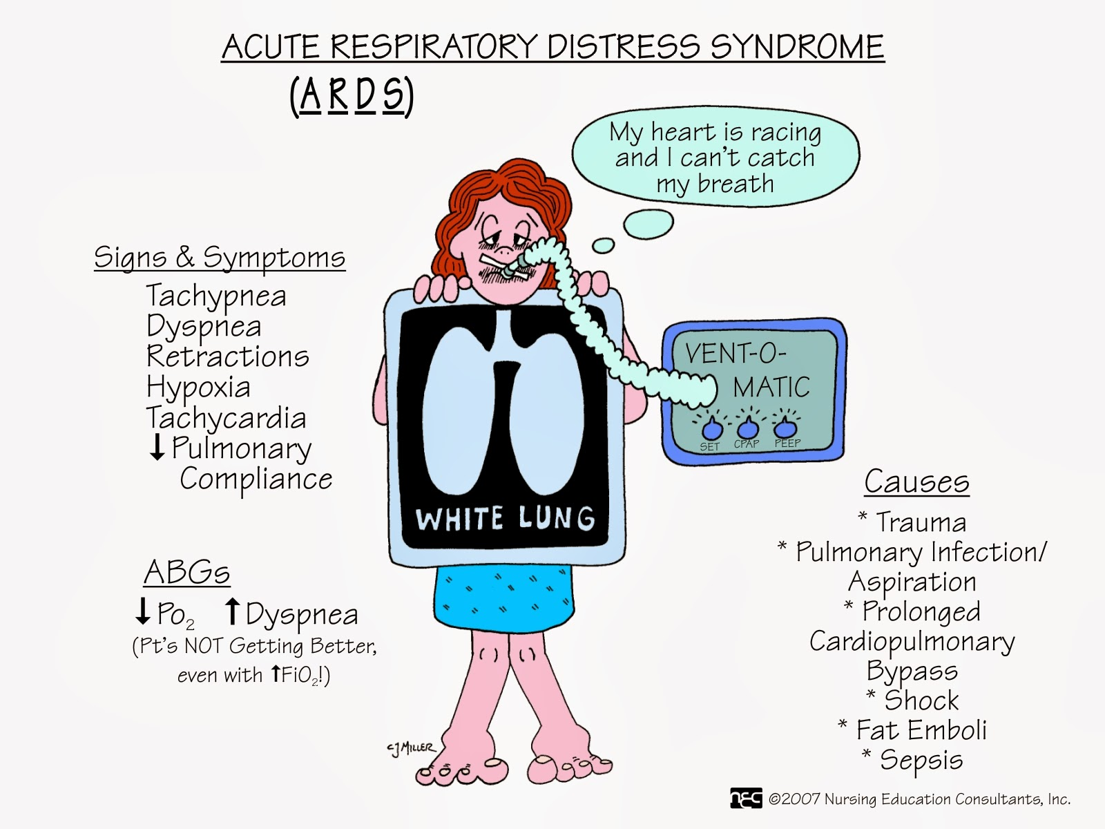 the adult respiratory distress syndrome