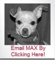 Email Max-He LOVES Fan Mail!
