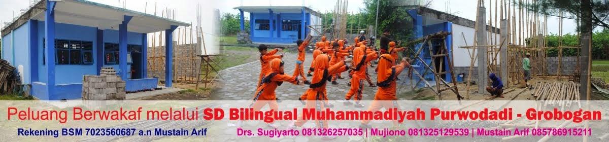 sd muhammadiyah