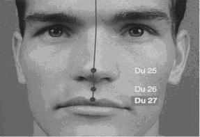 Duiduan (DU27): tepi atas bibir atas