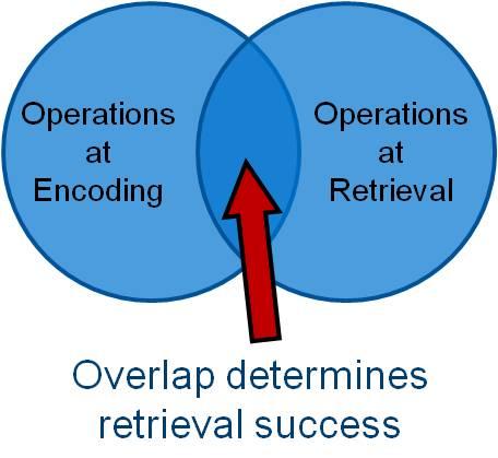 The encoding specificity principle