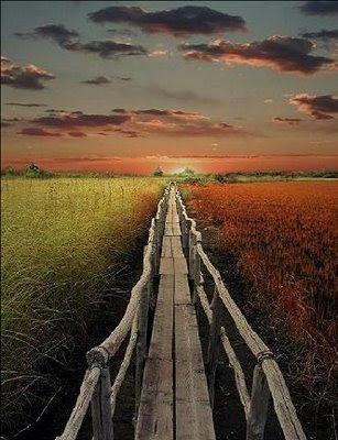 ο παράδεισος δεν είναι εκεί που νομίζεις