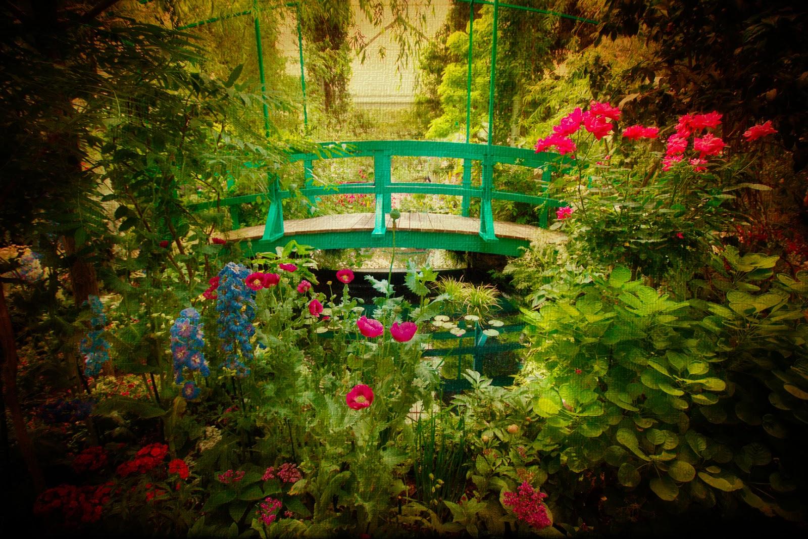 Unique wallpaper plantas flores y jardines exuberantes for Fotos de jardines