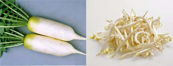 Cách chữa nám da bằng giá đỗ và củ cải trắng