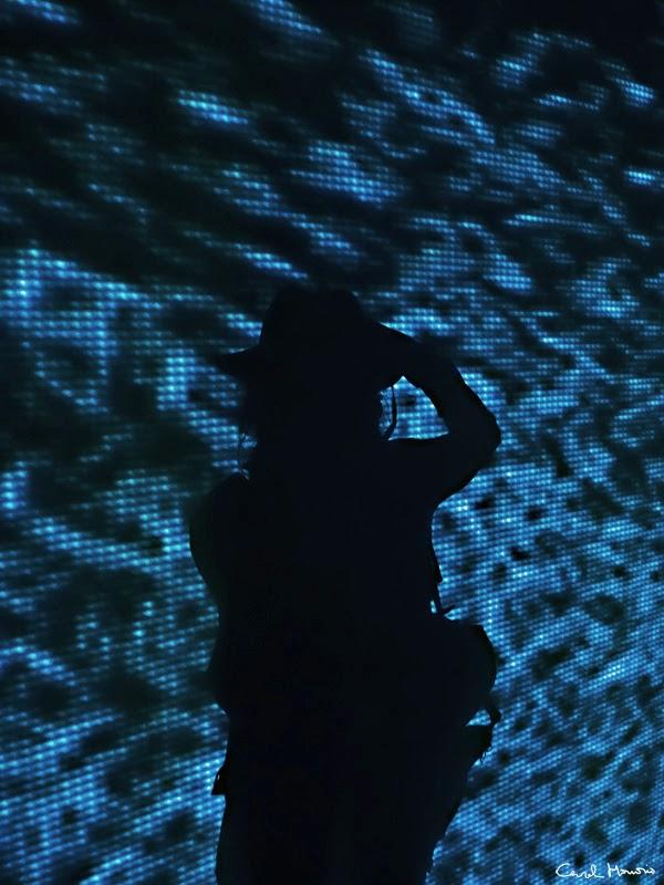 2014, Buscándome en las profundidades, Autorretrato.