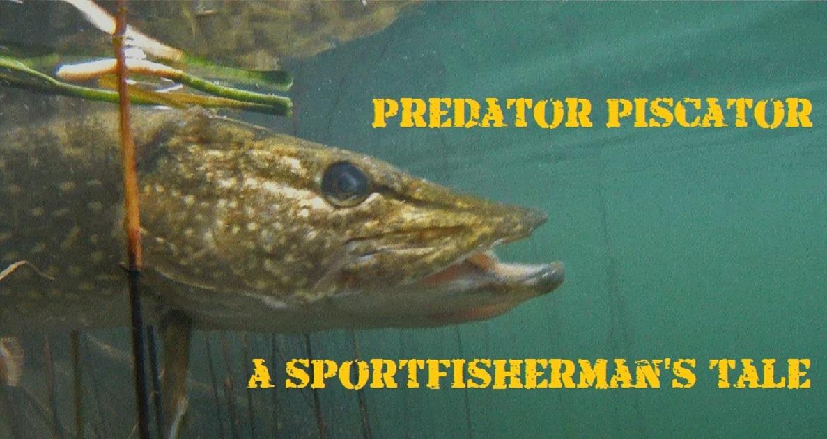 Predator Piscator