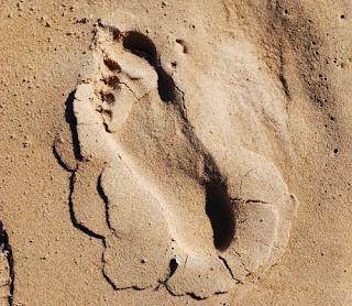 Foot print on beach