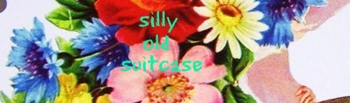 silly old suitcase