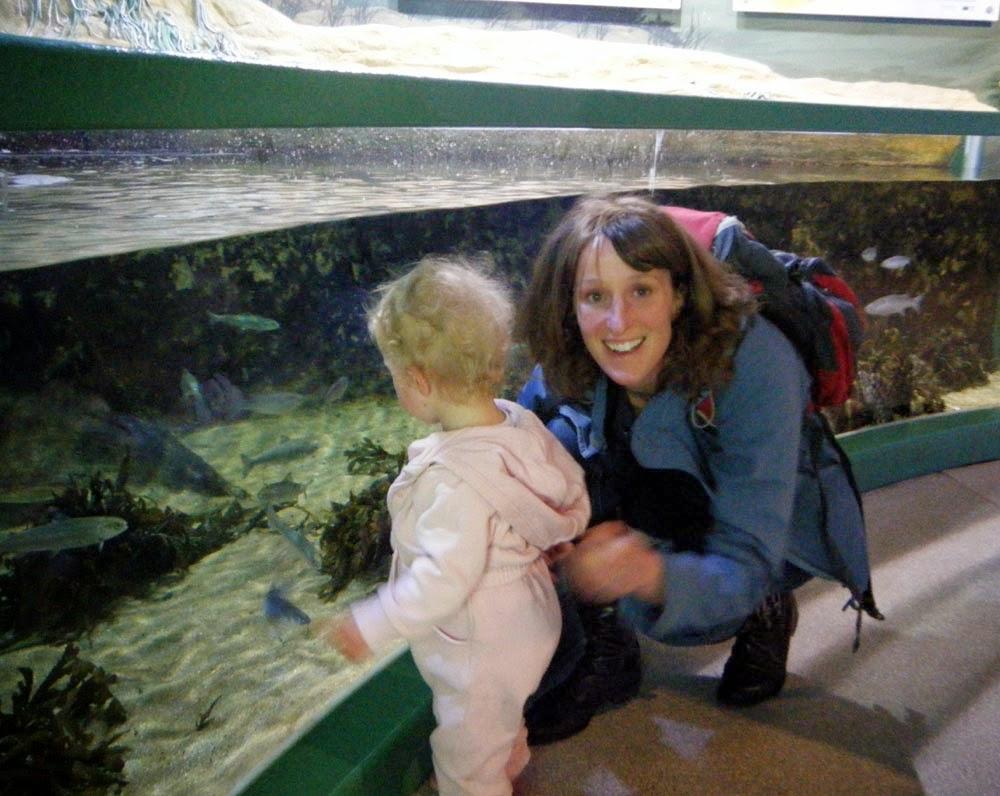 MacDuff Aquarium