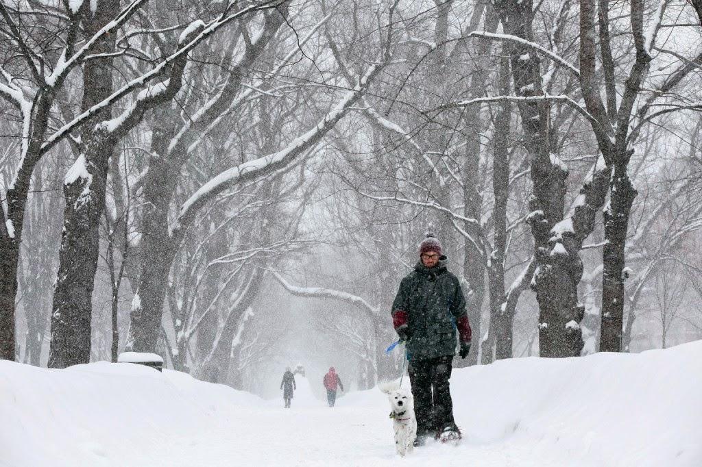 időjárás, hófúvás, havazás, hóvihar, Egyesült Államok, Boston, Massachusetts,