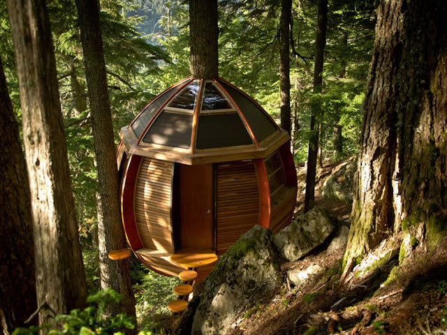 A circular tree house built by Joel Allen in Whistler