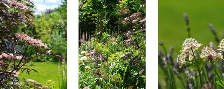 Bedkomposition med mørkt løv og pastelfarvede blomster. En moderne fortolkning af det romantiske bed