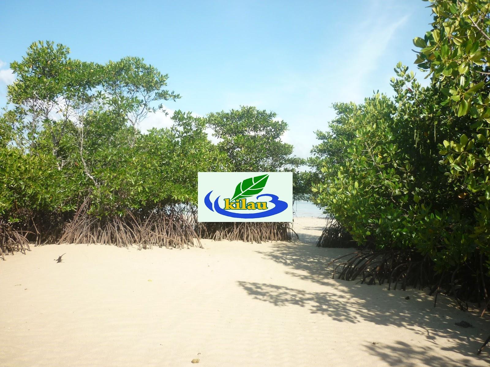 Objek Wisata Banggai Kepulauan
