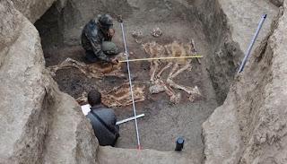 Esqueletos de gigantes en la Biblia