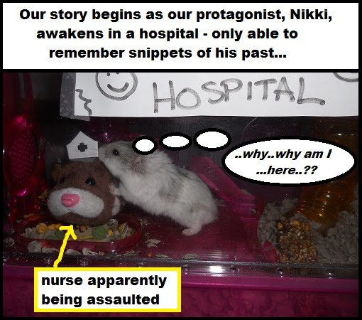 nikki wakes in a hospital