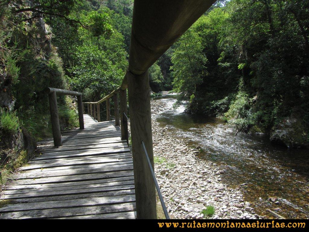 Ruta Hoces del Esva: Camino de madera sobre el río Esva