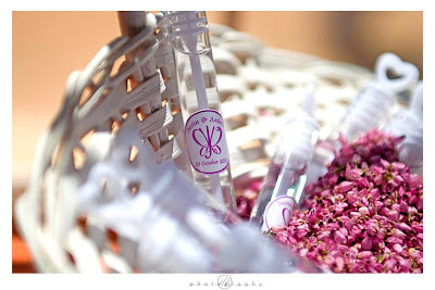 DK Photography Anj4 Anlerie & Justin's Wedding in Springbok  Cape Town Wedding photographer