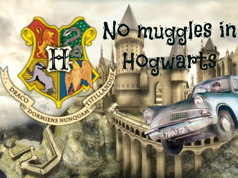 No muggles in Hogwats