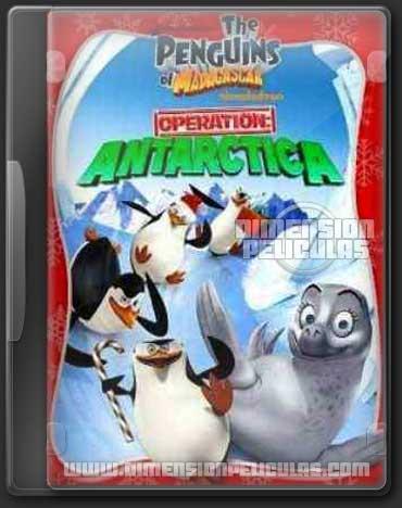 Pinguinos Madagascar: Operación Antártica (DVDRip Latino)