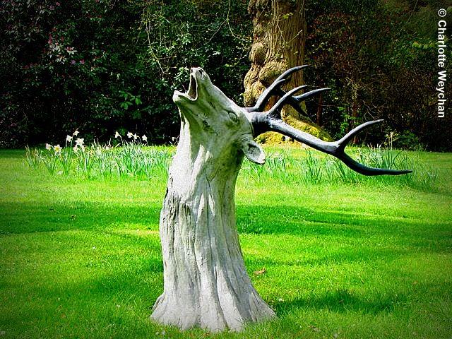 Yard art and stumps on pinterest tree stumps tree stump for Tree trunk art