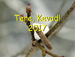 Tere, Kevad 2019!