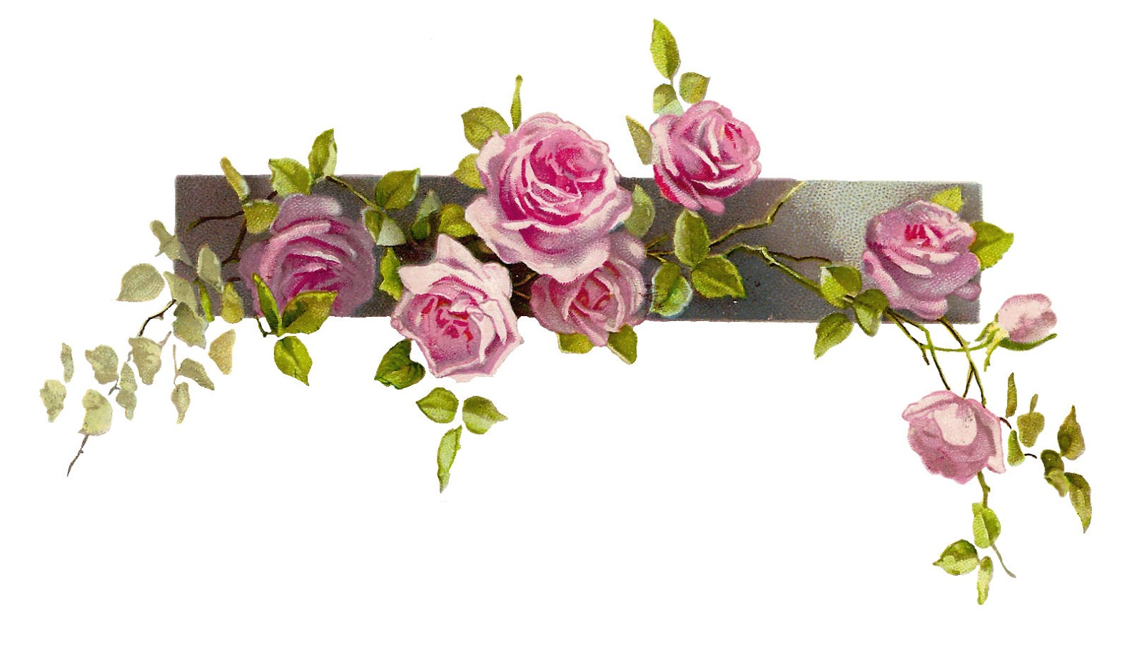 Free Flower Graphic  Vintage Pink Rose Clip Art Branch and LeavesVintage Rose Clip Art