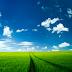 Green Field Ipad Wallpaper