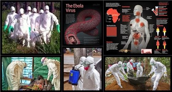 Эбола: вирус, который угрожает планете