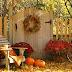 Sunny Autumn Respite