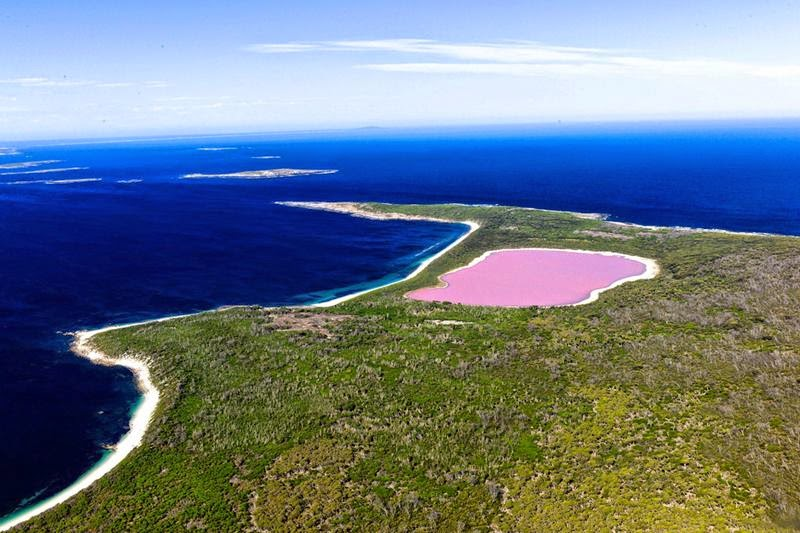 Arial View of Hillier Lake on Middle Island - in Western Australia by Ockert Le Roux