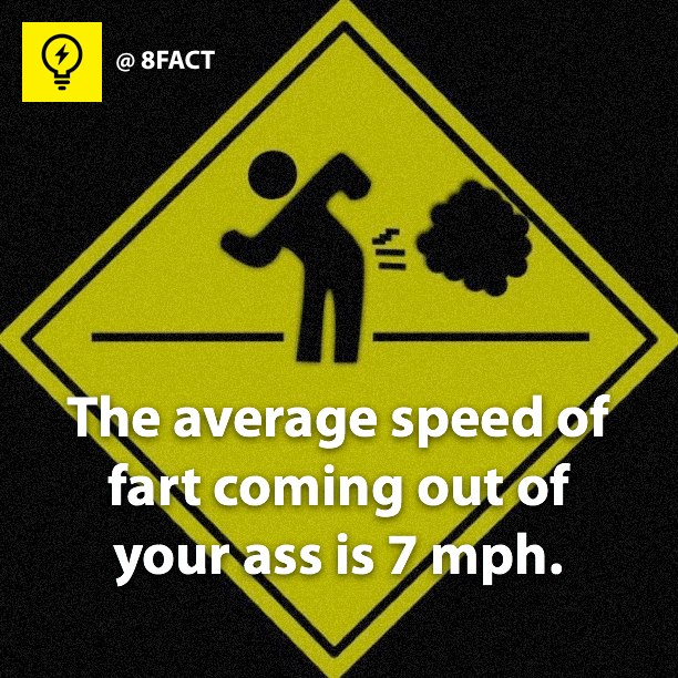 Facts the average speed of fart coming out of your ass is 7 mph 8fact