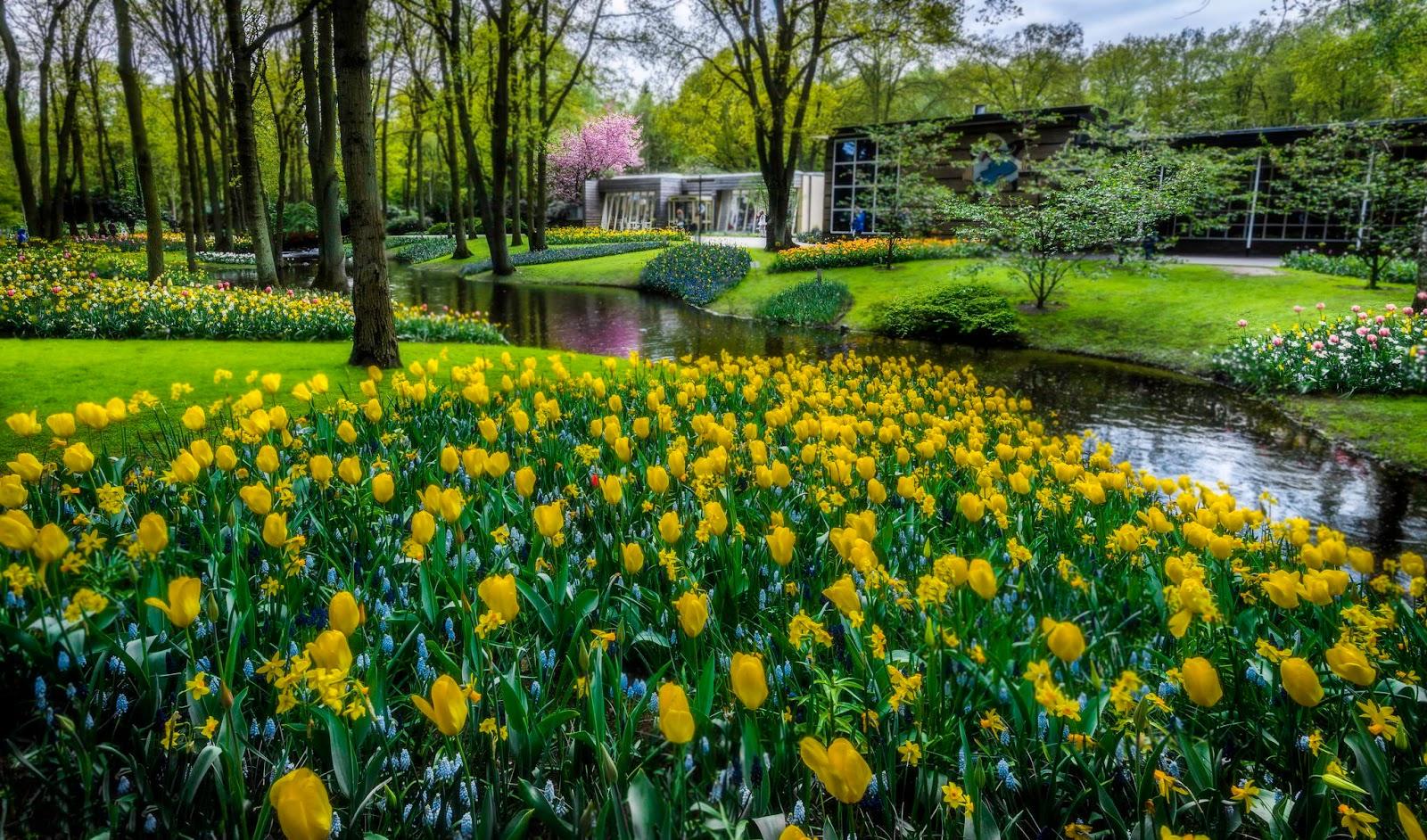 Hermosos y paisajes gallery for Fotos de jardines