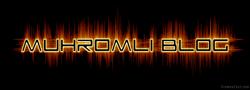 Muh Romli Blog