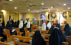 Religious Sisters of Mercy of Alma, MI