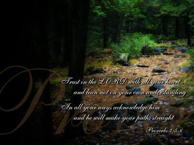 Proverbs 3:5-6 Bible Verse
