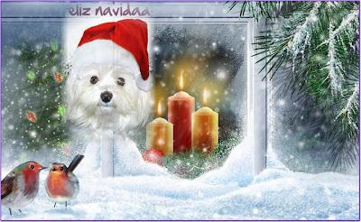 Feliz navidad con un perrito y velas