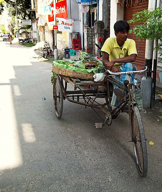 vegetables selling on cycle cart