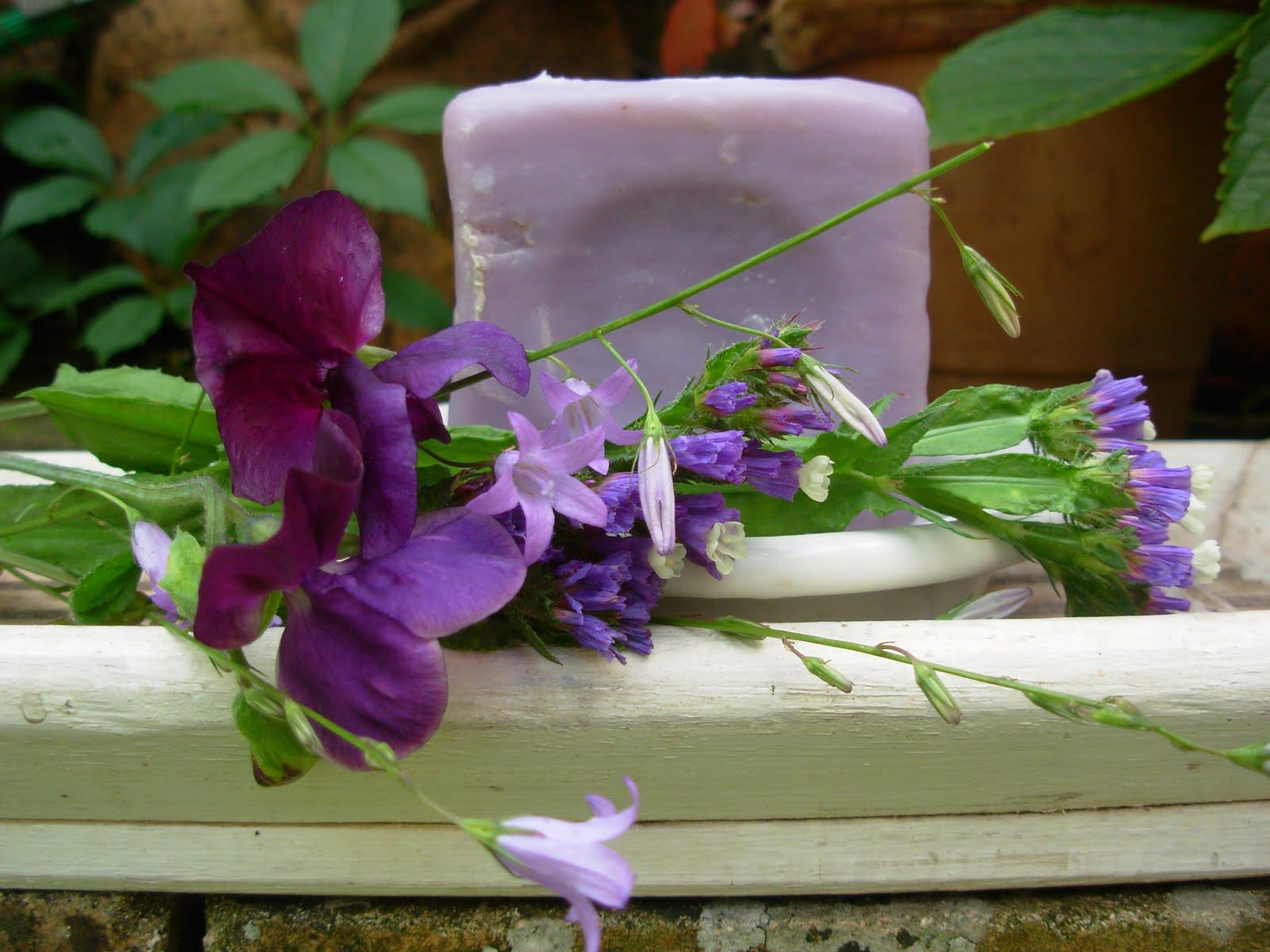 3 sous un parapluie nuancier violet - Nuancier de violet ...