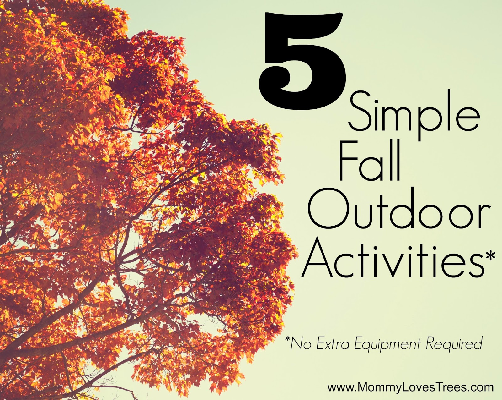 5 Simple Fall Activities: No Extra Equipment Required