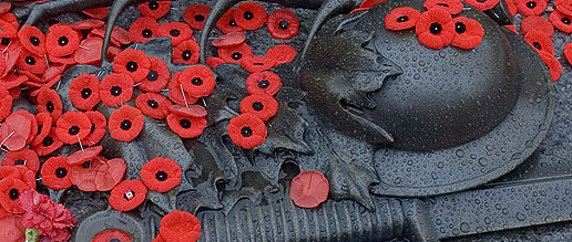 Remembrance Day, poppy, veterans